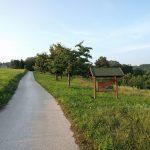 Češnjev nasad Zahrib, Velike Brusnice